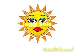 1 ok sole