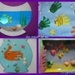 4 acquari